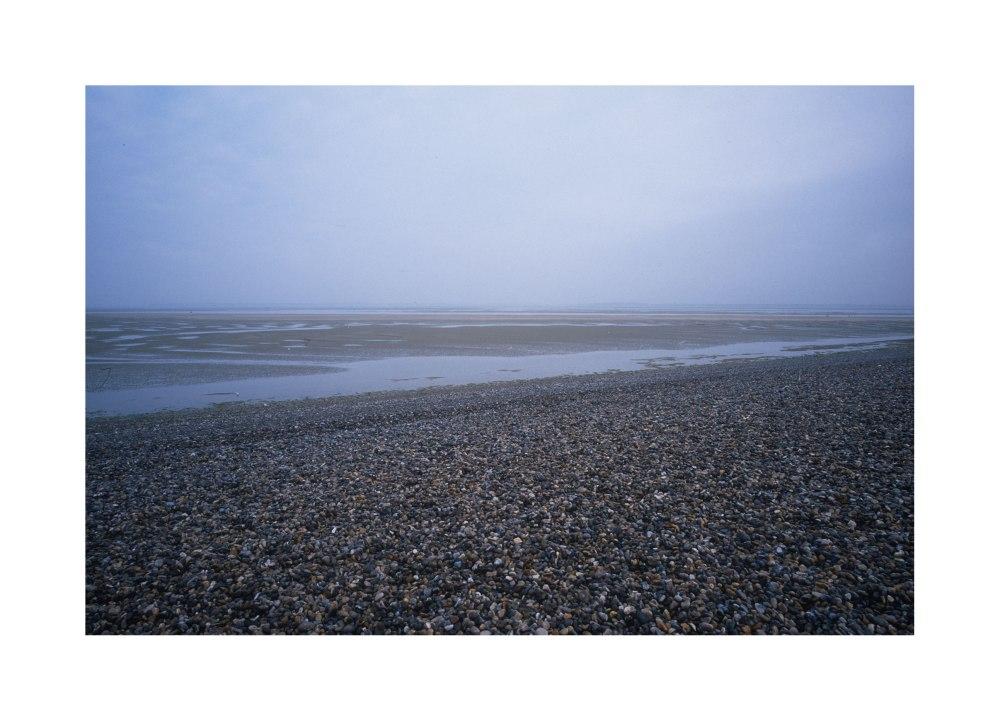 Plage en baie de Somme à la recherche de phoques