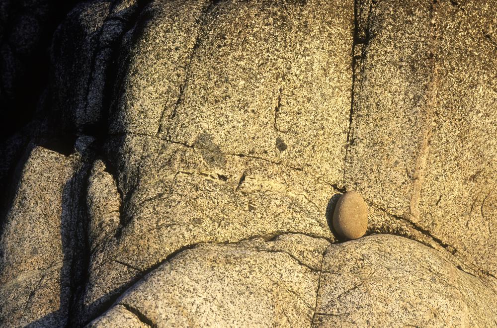 Detail-de-roche-bretagne-8