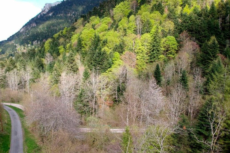 Montsegur-vallee-9