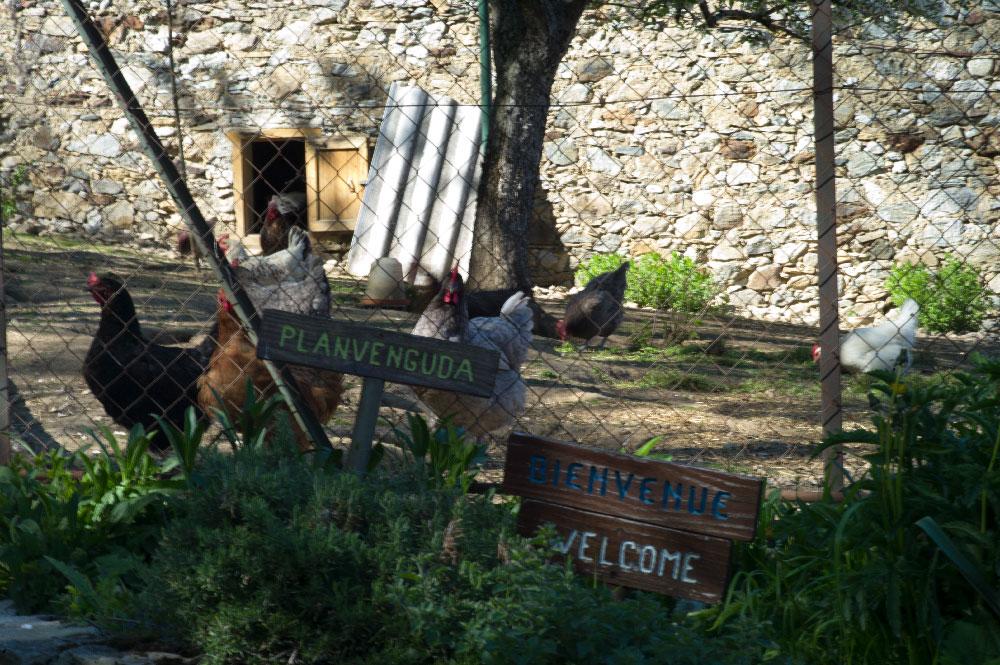 village-de-montsegur-25