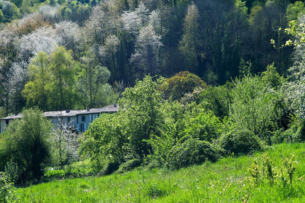 village-de-montsegur-34