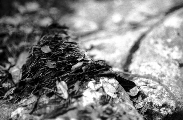 photographie noir et blanc, Land art, Photographie de nature, Noir et blanc argentique, photographie coloriste, nikon FM2