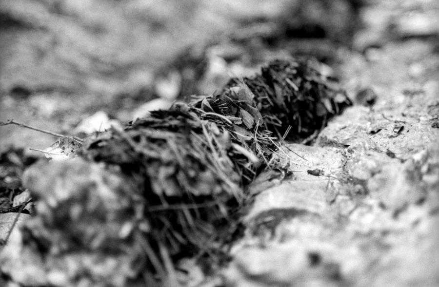 photographie noir et blanc, Land art, Photographie de nature, Noir et blanc argentique, photographie coloriste